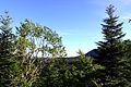 Mont-la-Ville, abri sous roche du Mollendruz, vue depuis le site.jpg