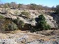 Monte Matambo em Tete - panoramio - Nelson Deolinda Amin… (6).jpg