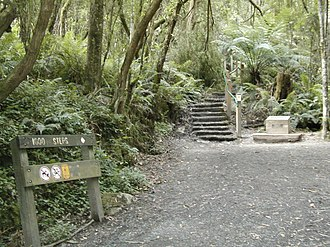 "Ferntree Gully, Victoria - The ""1000 steps"" Kokoda Track Memorial Walk in The Dandenong Ranges National Park"
