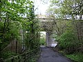 Motorway bridge over Charnock Back Lane - geograph.org.uk - 411781.jpg