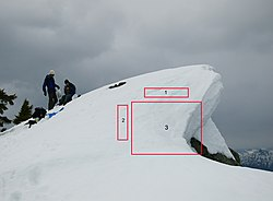 Mount Windsor Cornice2.jpg
