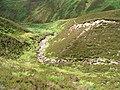 Mountain stream - geograph.org.uk - 30222.jpg