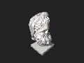 Msr-bearded-hercules-head-5.stl