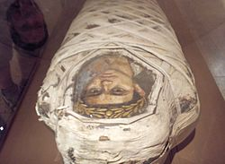 Mummy with Fayum Portrait of a Young Man.jpg