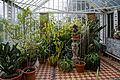 Myddelton House, Enfield, London ~ conservatory interior.jpg