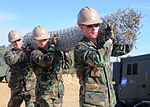 NMCB 74 Seabees Complete Security Forces DVIDS370975.jpg