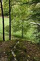 NSG-Diessener-Tal Karstwasserrinne Neckar-Tributar-Diessen.jpg