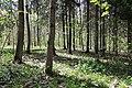NSG Zeisigwald bei Chemnitz..2H1A2610WI.jpg