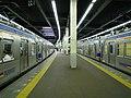 Nankai Nanba station platform - panoramio (2).jpg