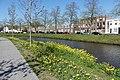 Nassausingel Breda P1360716.jpg