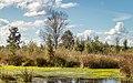 Nationaal Park Drents-Friese Wold. Locatie Fochteloërveen 01-09-2020. (actm.) 08.jpg