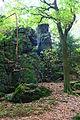 Natural monument Tupadelské skály in 2012 (7).JPG