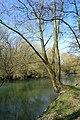 Naturschutzgebiet Haseder Busch - Innerste (22).jpg