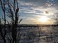Near Puuvrasjoki - panoramio.jpg