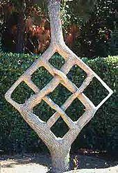 Tree Shaping Wikipedia