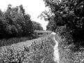New Pondtail Bridge, Basingstoke Canal - geograph.org.uk - 476847.jpg