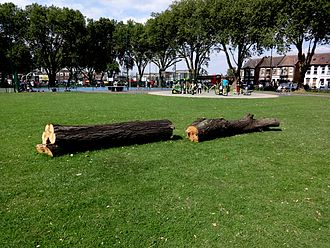 Ducketts Common - Image: New logs for extra seating