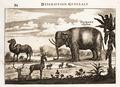 Nieuhof-Description-générale-de-la-Chine-1665 0872.tif