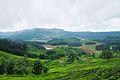Nilgiris, the blue mountains.jpg