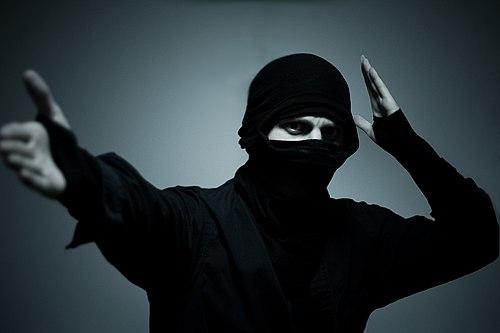 Ninja The Last Thing You See