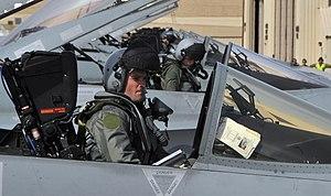 No. 77 Squadron RAAF - Image: No 77 Sqn RAAF pilots Feb 2010