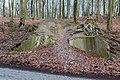 Nottuln, Lager Herbstwald -- 2016 -- 1476.jpg