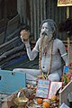 Nude Sadhu Playing Damru - Gangasagar Fair Transit Camp - Kolkata 2016-01-09 8446.JPG