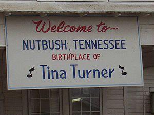 Nutbush tennessee sign tina turner.jpg