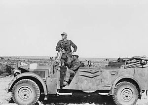 90th Light Infantry Division (Wehrmacht) - Typical transport used by the Division in north Africa