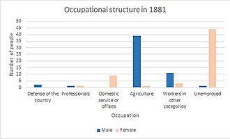 Ashton, Devon - Bar chart showing the numbers of male and female occupants into different classes of occupation in 1881 in Ashton