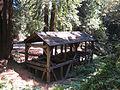 Old-Mill-Park-Mill-Valley-Florin-WLM-7.jpg
