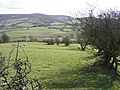 Old Hedge Line - geograph.org.uk - 356555.jpg