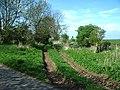 Old farm track - geograph.org.uk - 168538.jpg