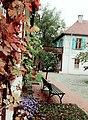 Old farmer house at Gartenreich Dessau Wörlitz.jpg