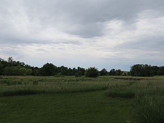 Olson Nature Preserve - View of the Olson Nature Preserve—the low grass and Beaver Creek.