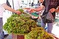 Open street food market in Bizerte 06.jpg