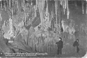 The Great Stalacpipe Organ - This postcard from 1906 illustrates the method of early lithophone performances in Luray Caverns