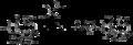 Original semi-synthesis of taxol.png