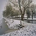 Overzicht gracht met beplanting vanuit het noordwesten - Groningen - 20366284 - RCE.jpg