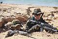 Pacific Warriors – JGSDF observe Marines 140716-M-FX659-021.jpg