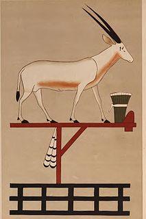 Oryx nome