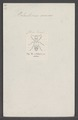 Palaestrinus - Print - Iconographia Zoologica - Special Collections University of Amsterdam - UBAINV0274 014 14 0032.tif