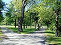 Parc Jeanne-Mance 06.JPG