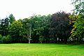 Park w Tychowie (4).JPG