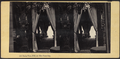 Parlor View, New York City, from Robert N. Dennis collection of stereoscopic views.png