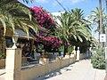 Passeig Maritim de Ribes Roges.jpg