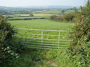 Blackdown Hill, Dorset - Pasture land, north of the B3164 with Blackdown Hill in the far distance.