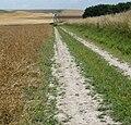 Path near Cherhill 04.jpg