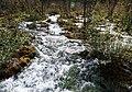 Pearl Shoal 珍珠灘 - panoramio.jpg