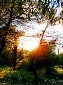 Perendim dielli - panoramio.jpg